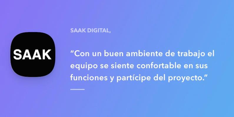 Entrevista a Saak Digital