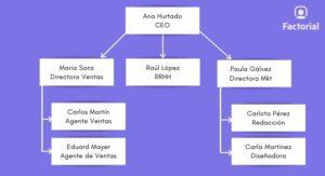 organigrama-empresa-vertical