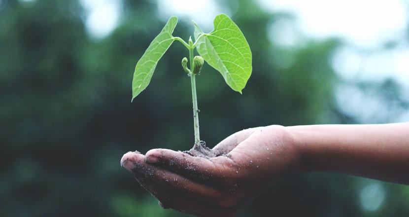sostenibilidad empresarial que es